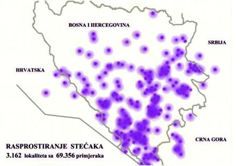 http://sa-c.net/images/stories/HISTORIJA_SARAJEVA/rasprostiranje_stecaka_karta.jpg